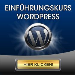 wordpress kurs einfuerung