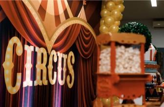 Circus Monaco Lübtheen: Carmen Sperlich über Interessantes aus und über das Leben im Zirkus